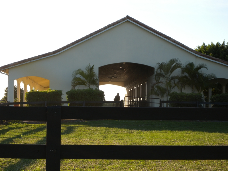 wellington horse barns and farms