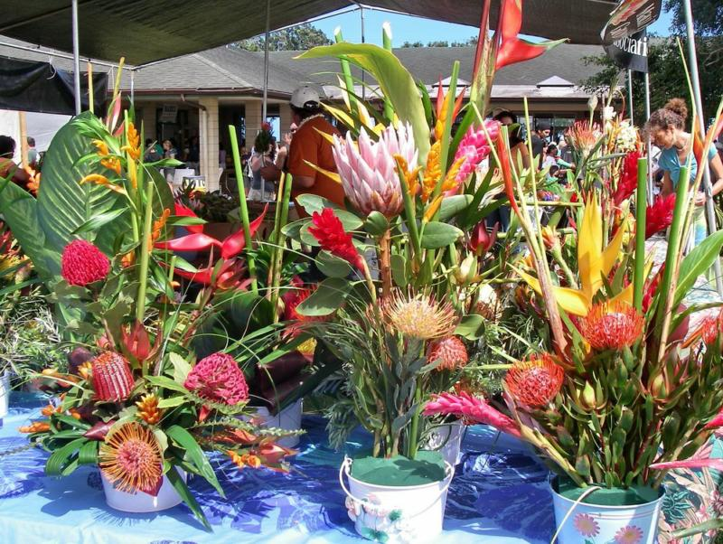 flowers for sale at the Haiku fair