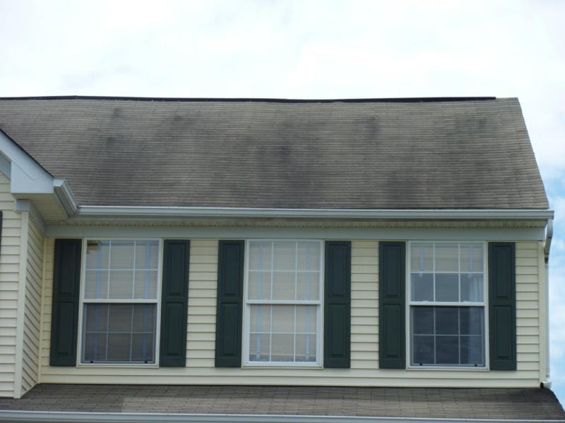 Black Algae On The Roof Jay Markanich Real Estate