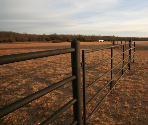 12-foot gate installed with pipe and cable horse fencing