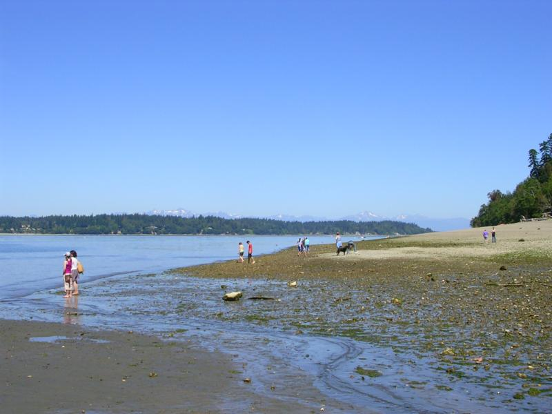 Best Parks in Olympia WA