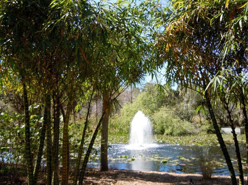 Pinellas County Florida Botanical Gardens - Largo Florida
