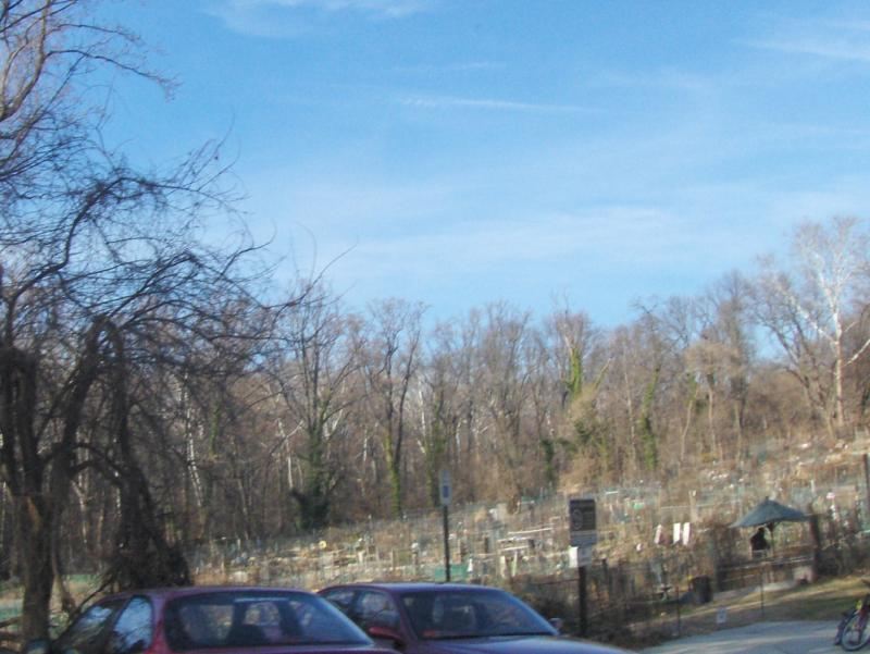Glover Park, Washington DC : Profile of a DC Neighborhood