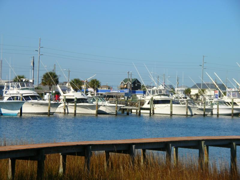 Morehead city voted best fishing town in america for Morehead city fishing