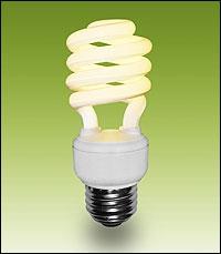 Hazards of Energy Efficient Light Bulbs