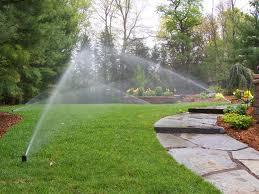 Free sprinkler system check-up
