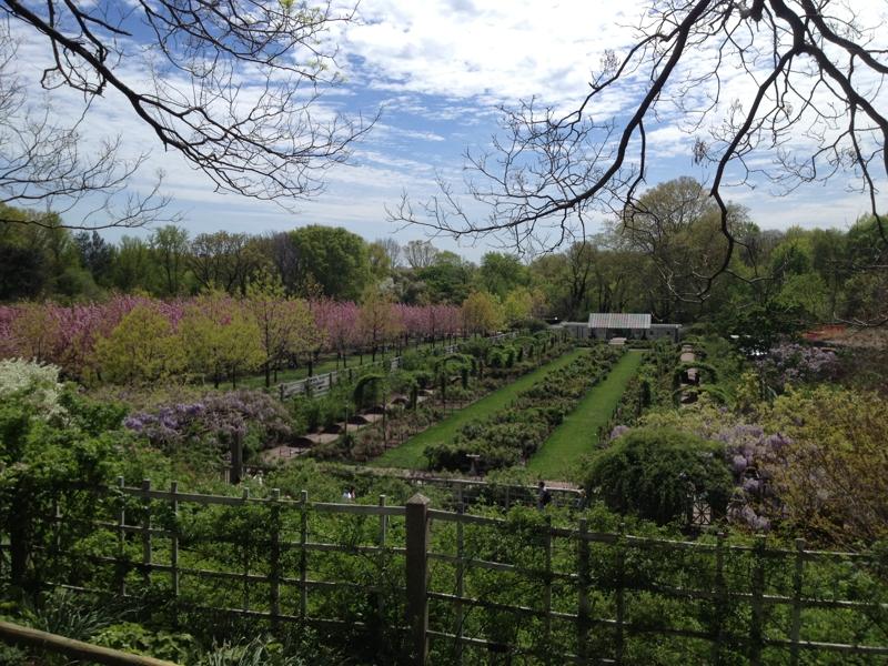 Feng Shui Flowers In The Brooklyn Botanical Garden By Feng Shui Long Island