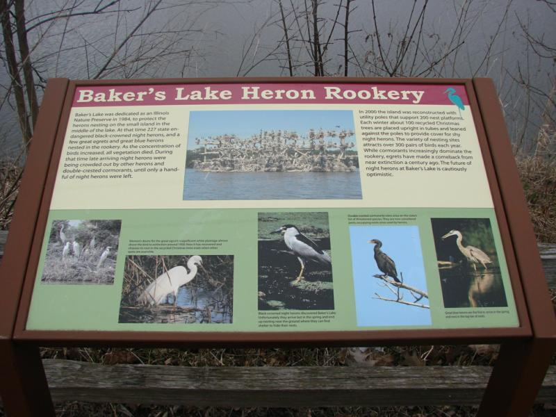 heron rookery on bakers lake with information for bird lovers