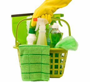 Use Green Household Cleaners!