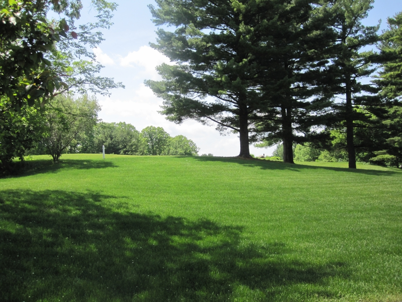 Oak Pointe Sub Luxury Home for Sale