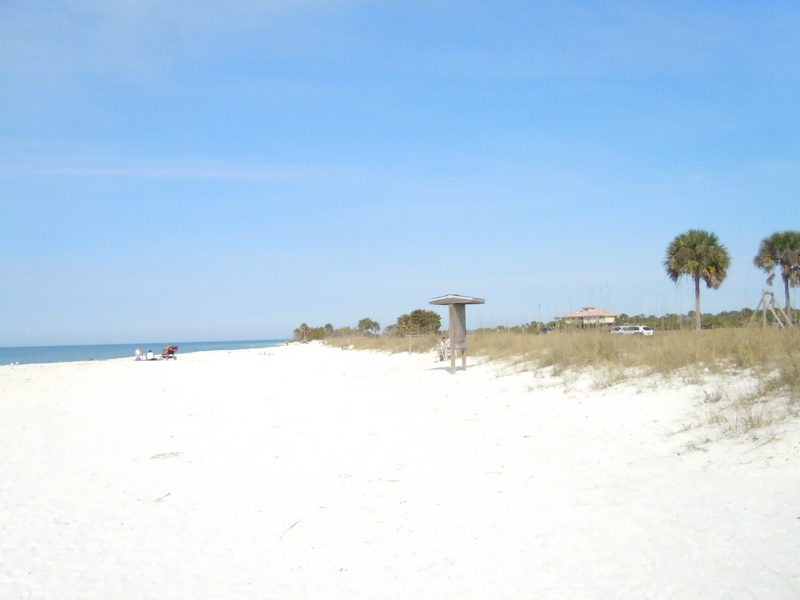 Honeymoon Island State Park Just Off