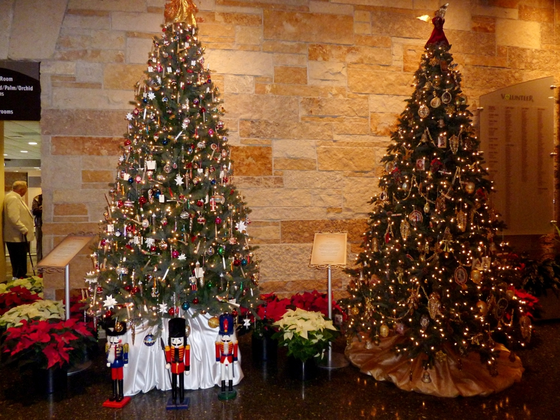 Germany and Austria Christmas Trees - Foto Friday - Grand Rapids Michigan Christmas Traditions