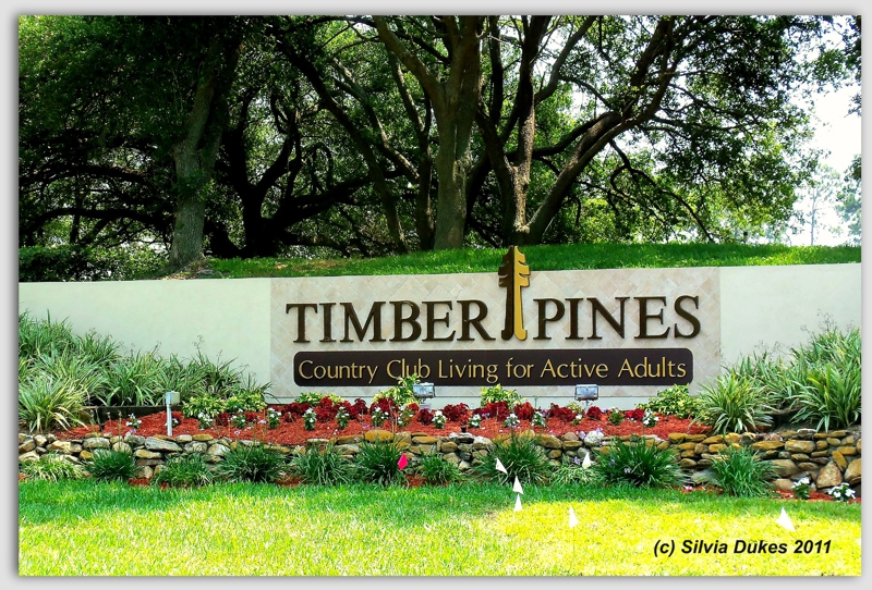 Timber Pines Spring Hill Florida by Silvia Dukes