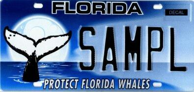 Florida has how many different license plates for Florida fishing license cost