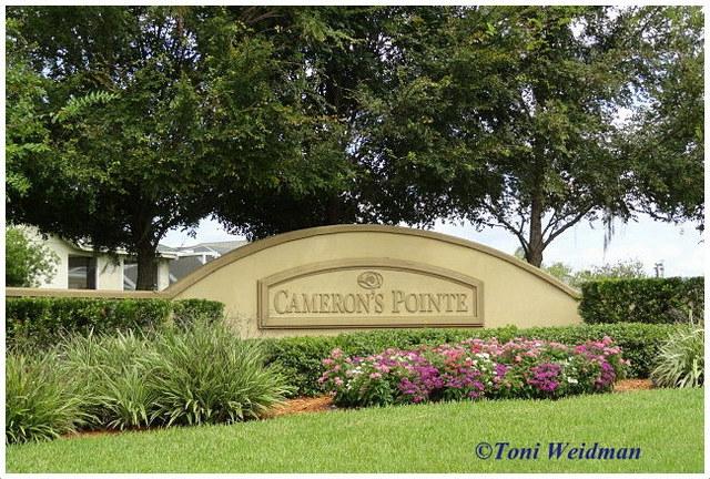 Cameron's Pointe, Trinity FL