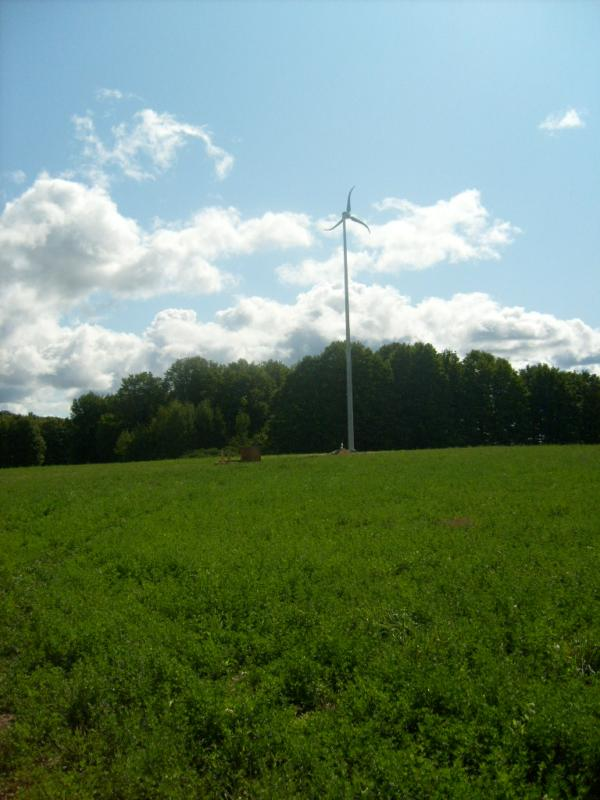 Contractors Building Supply SkyStream Small Wind Energy System