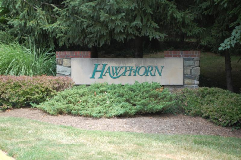 Hawthorn in Reston