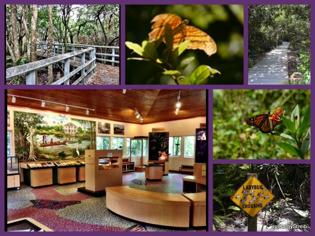 Things to Do in Broward County- Secret Woods Nature Center