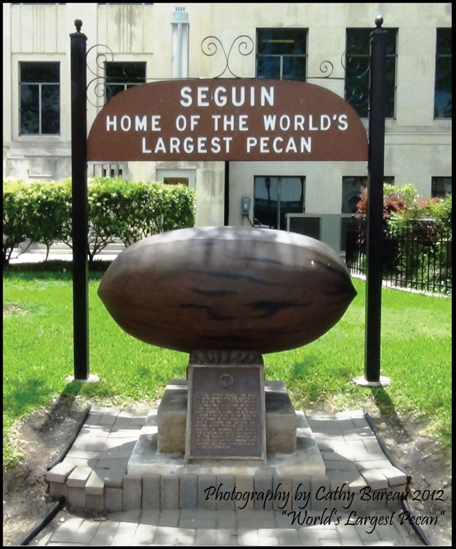 Live Near the World's Largest Pecan - Seguin Texas