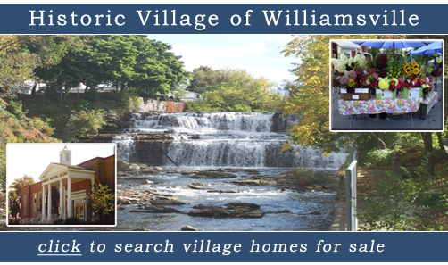 Homes for Sale Village of Williamsville, NY