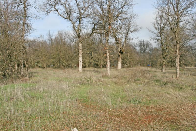 ar126304345848549 California Land for Sale ~ Luxury 1 2 Acre Lots ~ Cottonwood CA ~ Affordable!