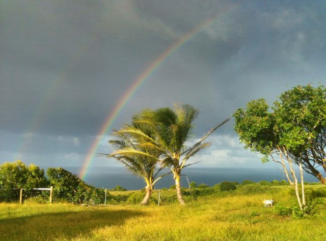 wordless Wednesday - rainbow time again in Haiku Maui HI