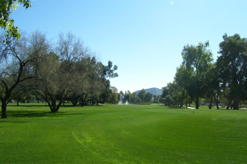 Orangetree Golf Resort