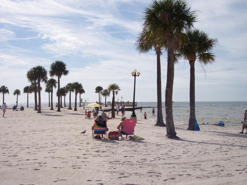Pine Island Hernando County Florida Beach Park