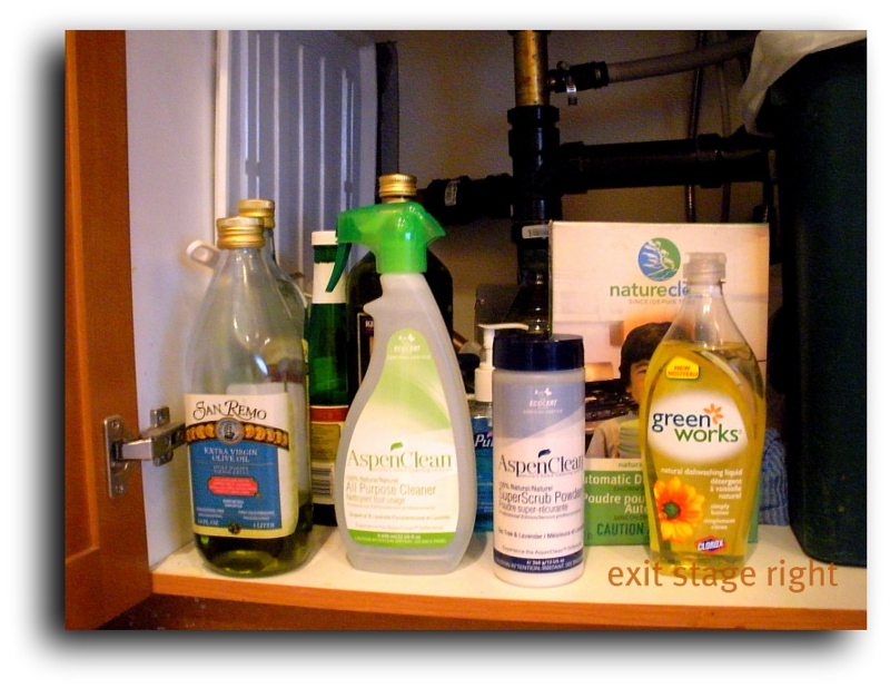 Environmentally friendly cleansers for home staging