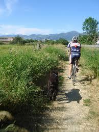 Bozeman Montana Trail System