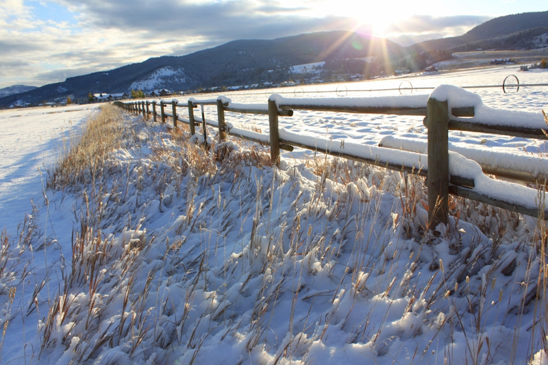 Bozeman Land For Sale