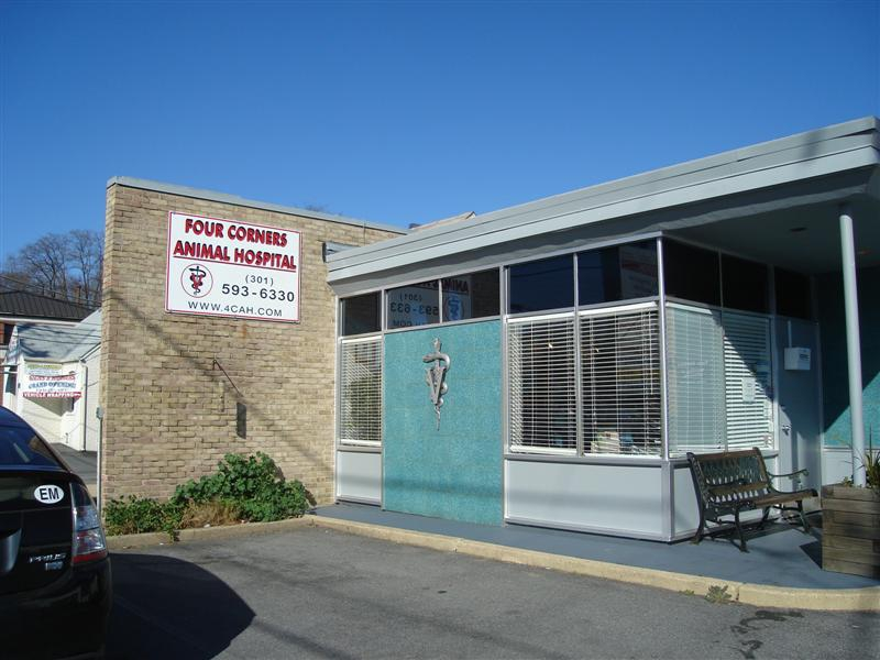 55 years as the Best Vets in Silver Spring - 4 Corners Animal Hospital