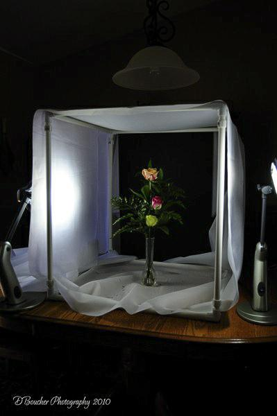 Home Made Light Tent For Macro Photography