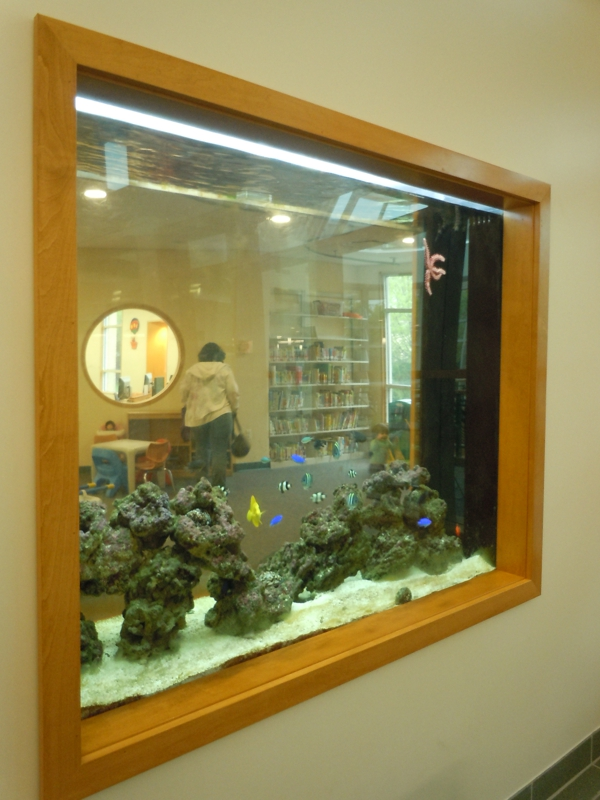 Exploring long island ny and nyc farmingdale public for Feng shui fish tank
