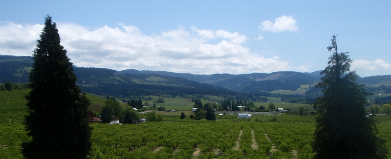 Hood River Valley