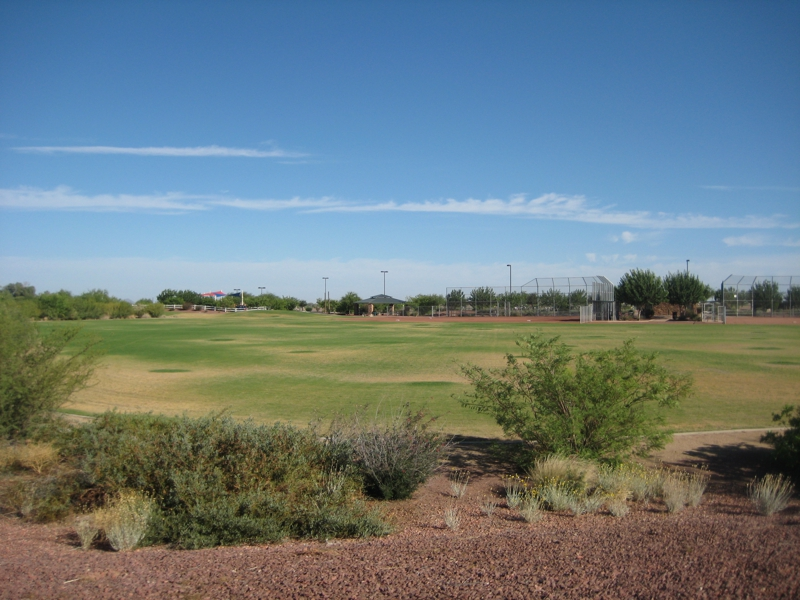 Homes For Sale Gladden Farms Marana Az