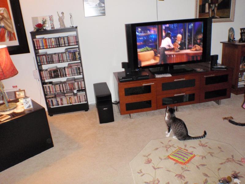 Jill Watching Jay Leno late at night