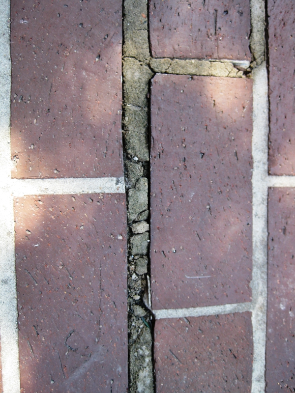 Cracked bricks