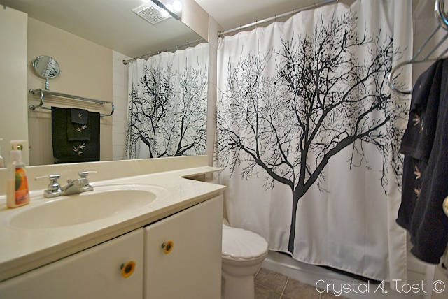16A 80 Galbraith Drive SW - Bathroom