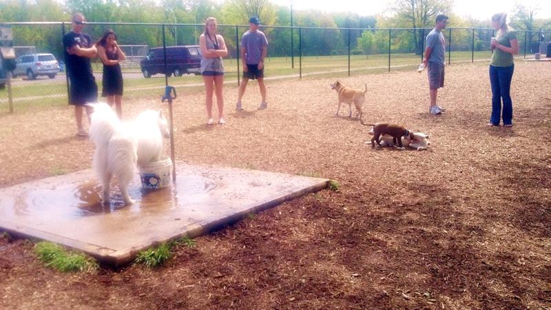 John G Lancaster Dog Park