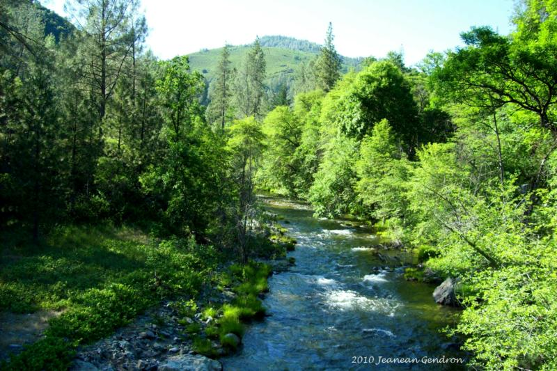 Northern California Properties ~ Ranch and Land ~ Creek Frontage on Clear Creek!