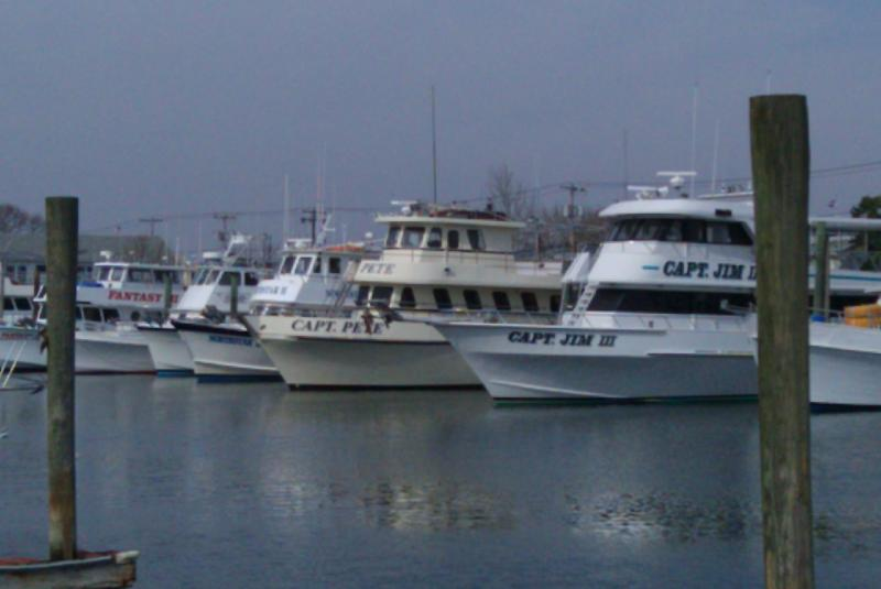 Long Island Boat Charters | Boat Rentals in Long Island, NY
