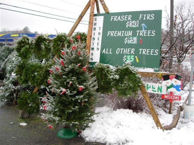 Rotary Christmas Tree Sale Sign