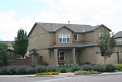 house in Windmill Mesa in Colorado Springs