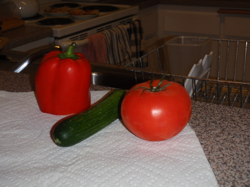 tomatoes, bell pepper & persian cucumbers