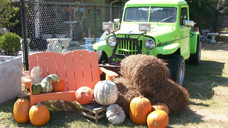 Fall Display Photo by Pat Starnes