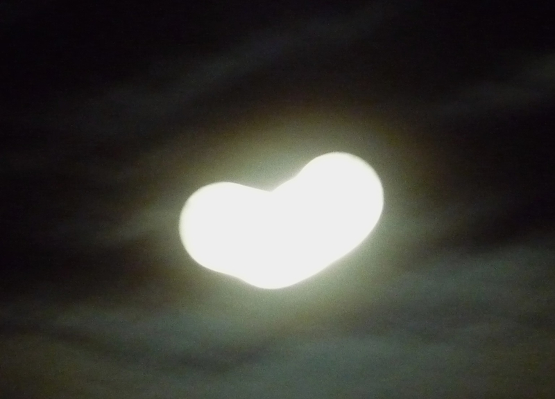 Love Moon HomeRome 410-530-2400