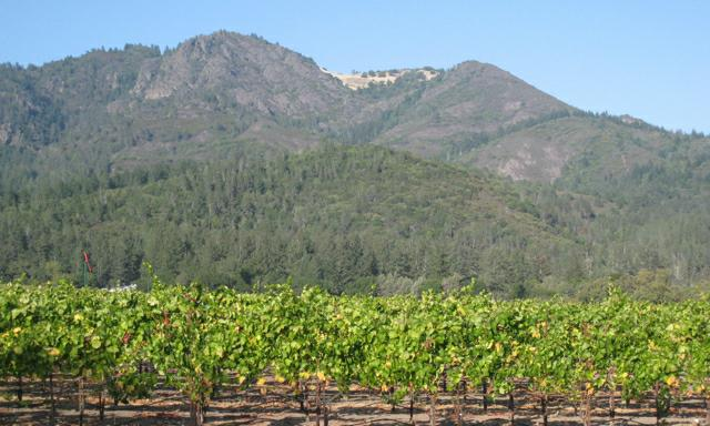 Sonoma County Wine Country Real Estate Mortgage, Ca