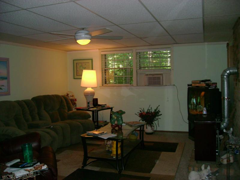 272 Cavalier Road, Athens, Ga 30606 - photo of basement living room