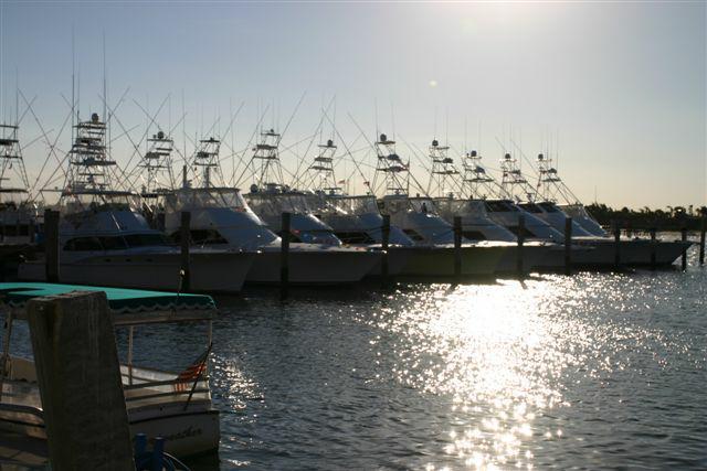 Thursday nites at sailfish marina singer island florida for Sailfish marina